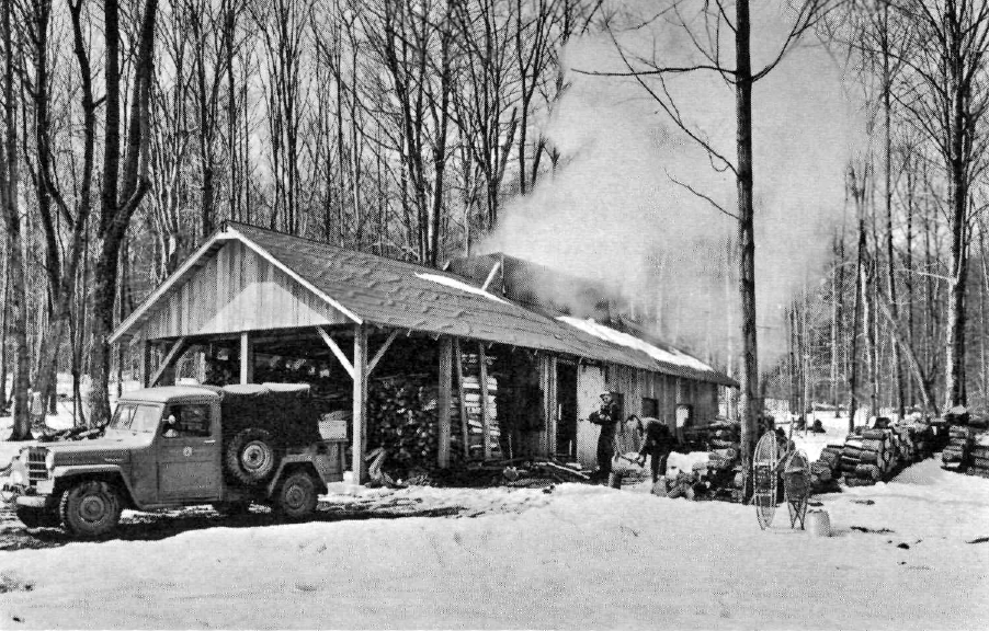 historical photo of sugaring off at the 3000 acre tully forest