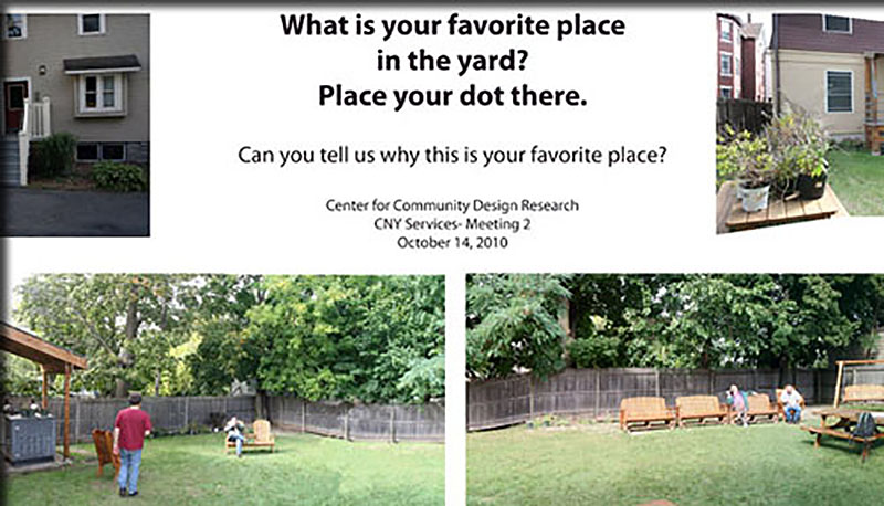 backyard survey