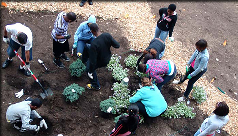 students woring on the garden