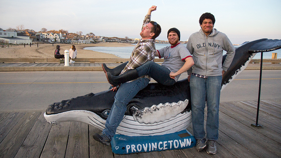 students riding Provincetown whale