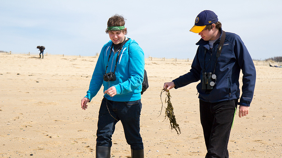 students with seaweed