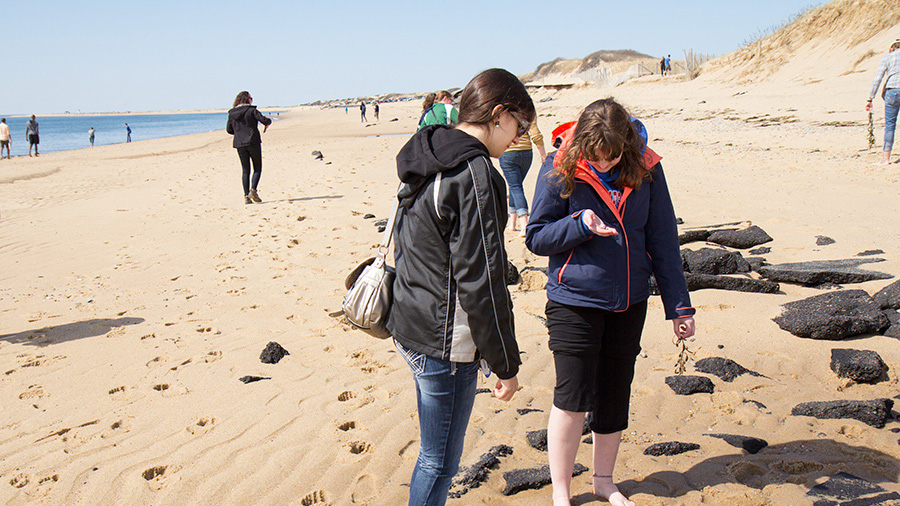 students on rocky sand