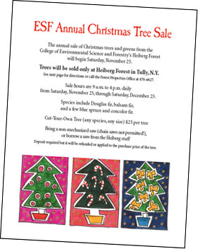 Ideas About Christmas Tree Sale Easy DIY