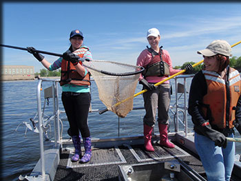 "Under the guidance of Dr. Karin Limburg, students from the Ukraine participated in the spring fisheries survey conducted by Region 4 DEC in May on the Hudson River. Pictured from left are Anna ""Anya"" Ganzia, Nataliia ""Natasha"" Shynkarenko, and Olga ""Ohla"" Shevtsova"