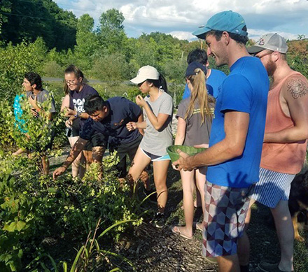 Rand Michaels (foreground in blue cap) worked on a farm in the Thousand Islands this past summer.
