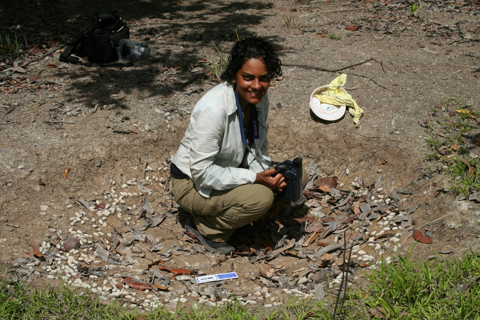 Dr. L. Cynthia Watson inspects a huge Arapaima nest that had been occupied in a previous flood season.