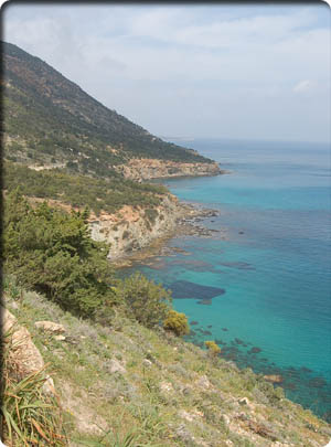 Picture of the coastline of Cyprus showing turquoise water due to lack of organic material