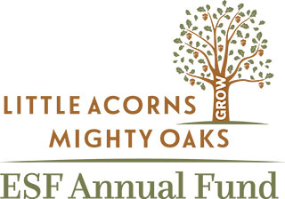 Little Acorns Mighty Oaks ESF Annual Fund