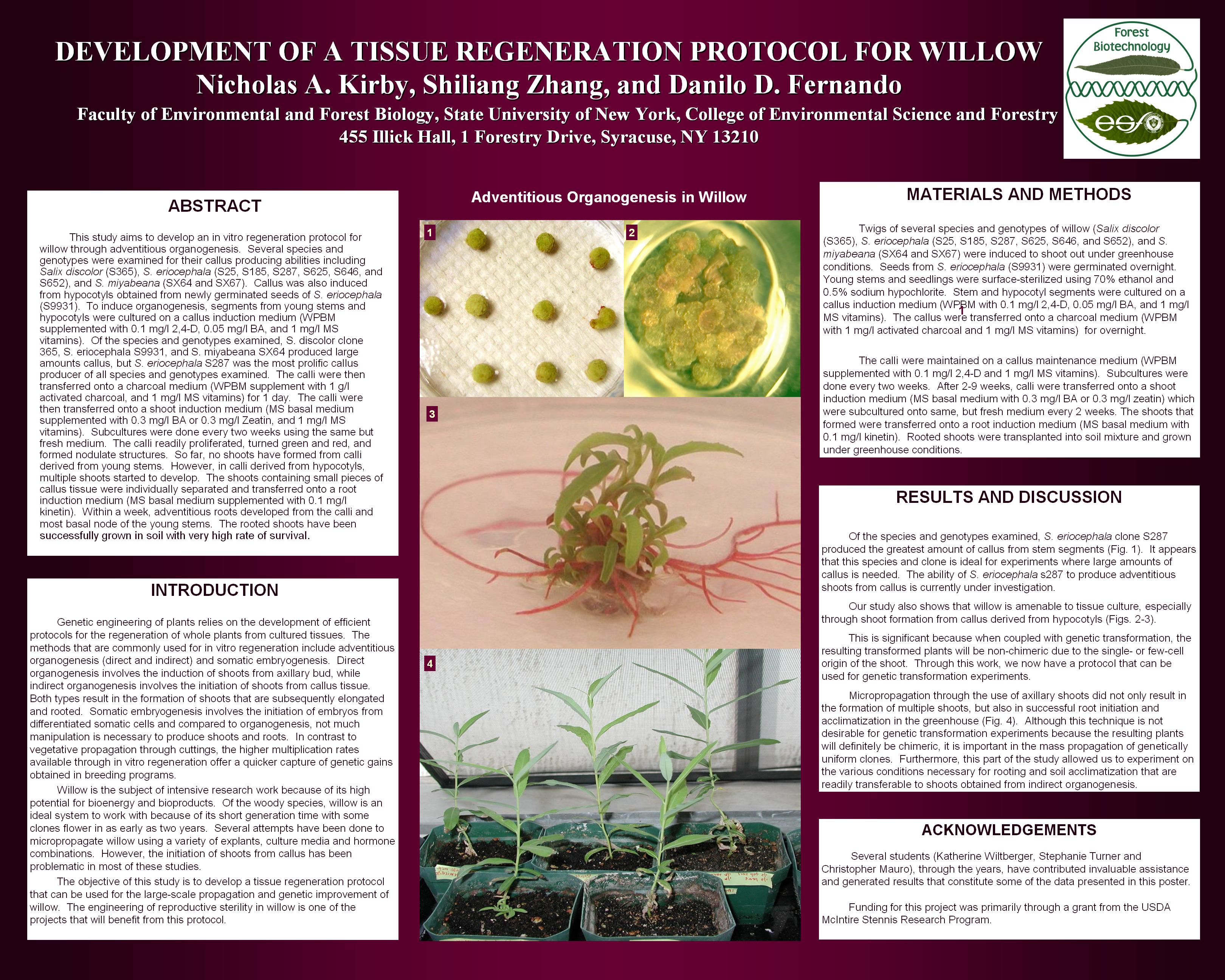 forest biotechnology 1 the value of forest biotechnology: a cost modeling study with loblolly pine and kraft linerboard in the southeastern usa gary f peter1,2,, david e white2,3, rafael de la torre4, rajan singh3, david newman2,4.
