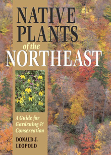 native plants of the northeast