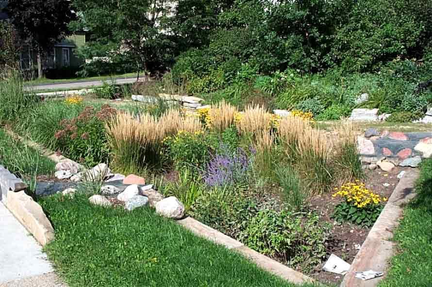 18 best rain gardens images on Pinterest Rain garden Google