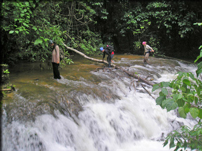 students near a waterfall