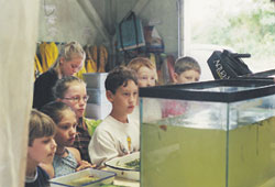 Elementary public school students learning about freshwater ecology