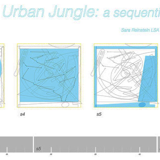 Urban Jungle: a sequential experience