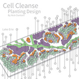 Cell cleanse planting design
