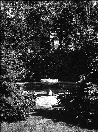 Fountain Surrounded by Woods