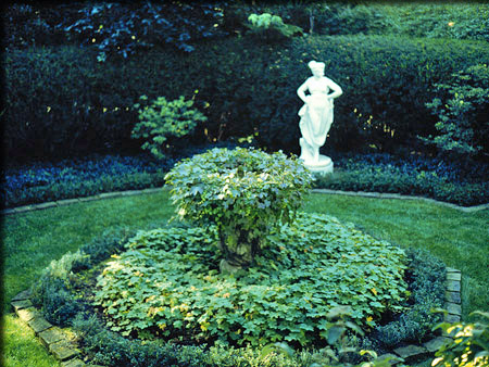 Green Garden with Statue